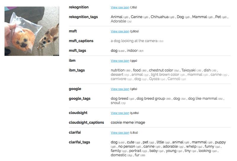 Imagenet Muffin Chihuahua vs. Muffin Computer Vision Image Recognition APIs Google Amazon Microsoft IBM Watson Clarifai