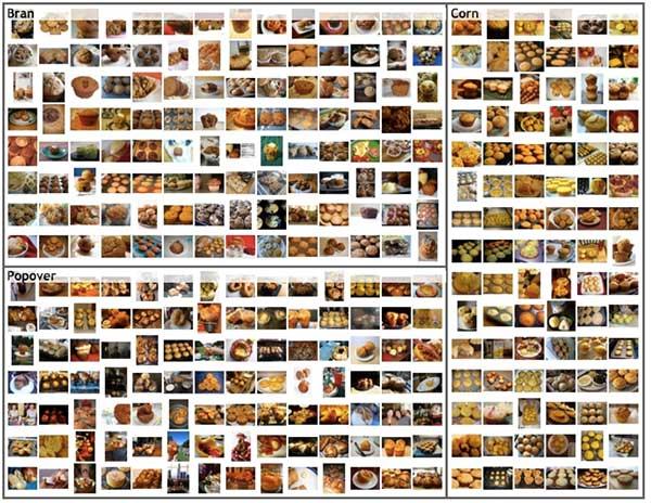 Chihuahua vs. Muffin Computer Vision Image Recognition APIs Google Amazon Microsoft IBM Watson Clarifai Imagenet Muffin